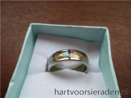 Ring Metaal Abalone